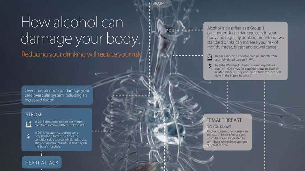 How alcohol can damage your body infographic
